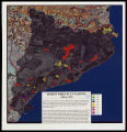 Forest fires in Catalonia (1986 to 1995)
